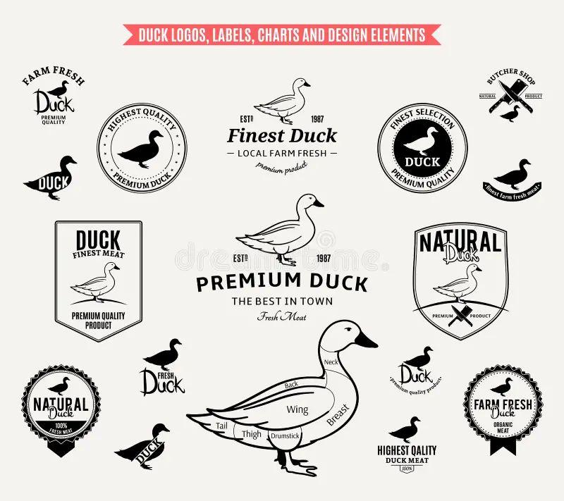 duck diagram