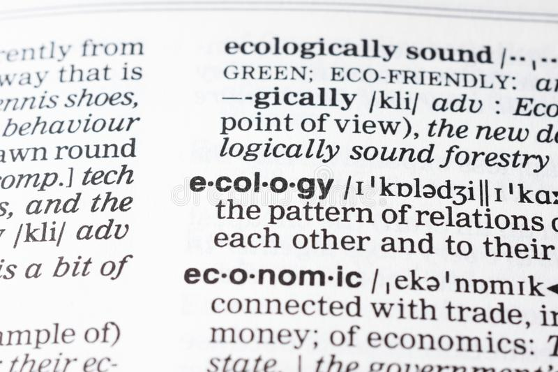 Ecology definition stock photo. Image of concept, page