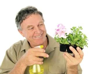 Resultado de imagen de vaporizador plantas