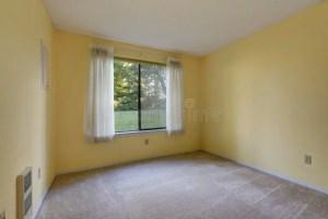 empty yellow gelben leeren raum sie teppichboden ummauern wand zu parete gialla pavimento vuota tappeto stanza northwest carpet floor usa