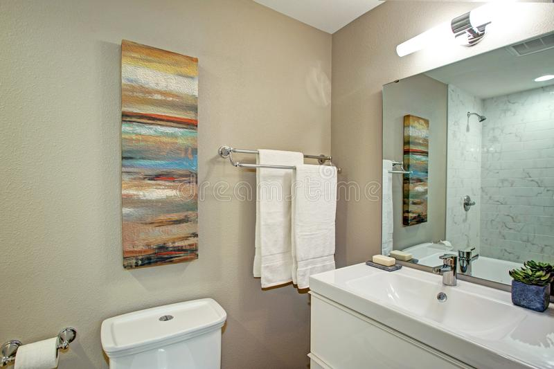 Ensuite Bathroom With Bathroom Vanity And A Toilet Stock Photo Image Of Furniture Ensuite 105037958