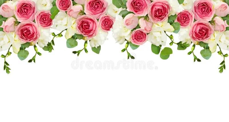 Floral Top Border Stock Illustrations