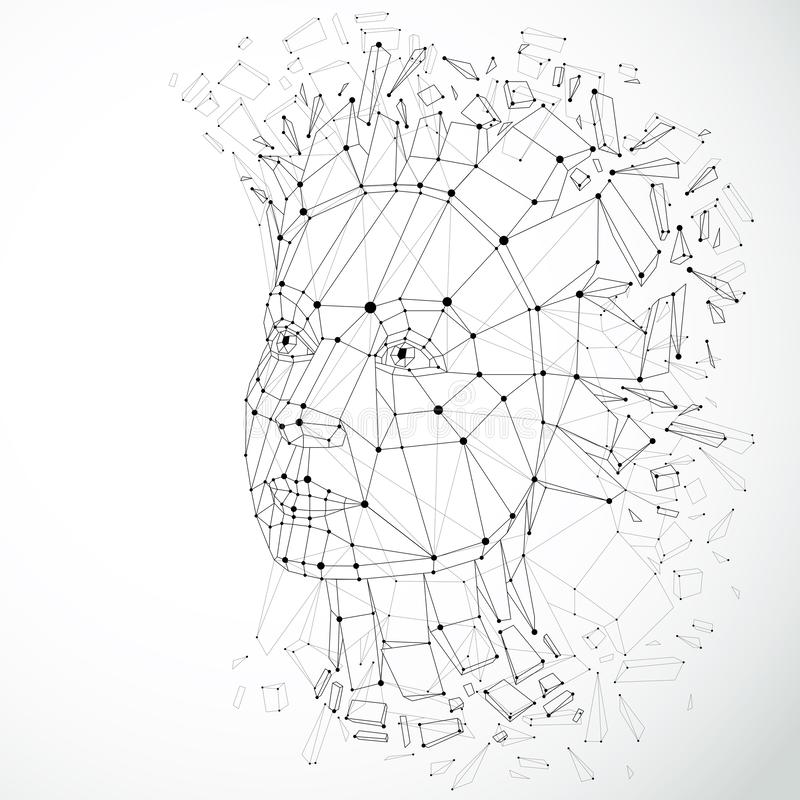 Wireframe Woman Face stock vector. Illustration of schema