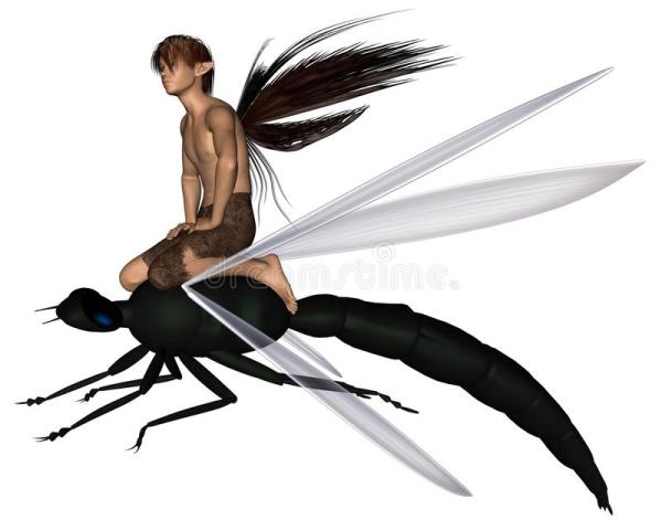 fairy dragonfly rider stock illustration