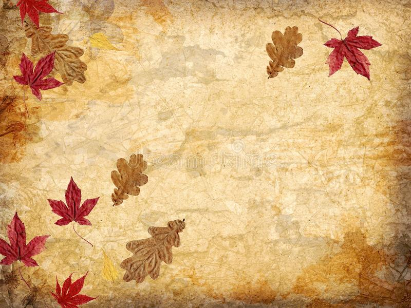 Fall Powerpoint Wallpaper Fall Leaves Background Stock Image Image Of Beautiful