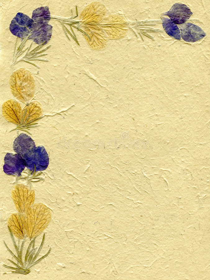 Floral Parchment Royalty Free Stock Photos  Image 3335068