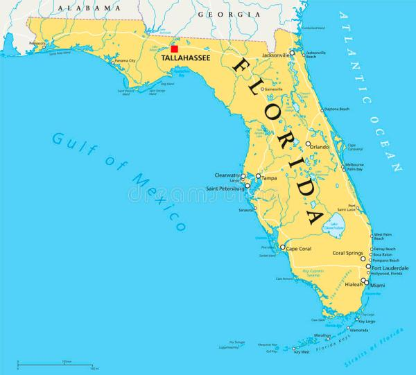 Florida political map stock vector Illustration of