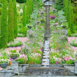Flower Garden Under Stairs Gardening Flower And Vegetables