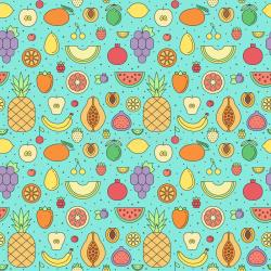 fruit seamless pattern watermelon garnet lemon vector persimmon outline simple