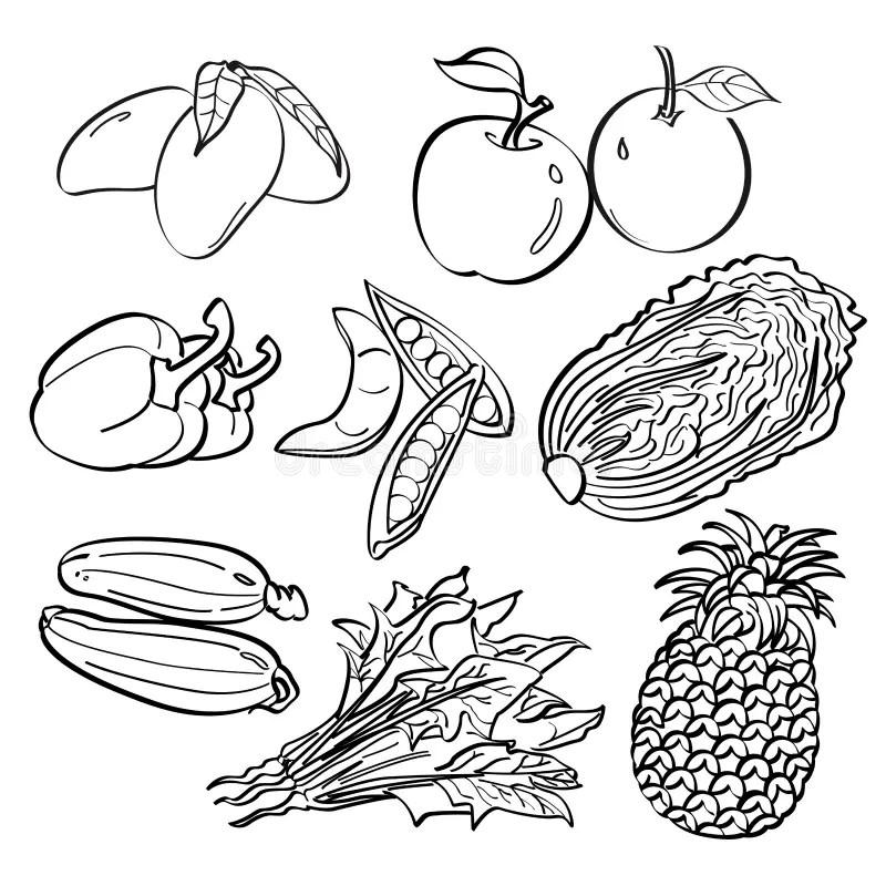 Fruit and Vegetables Set stock illustration. Illustration