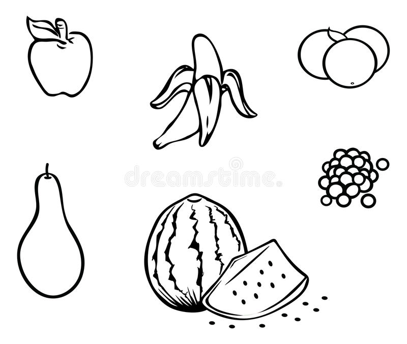 Grapes Outline Drawing