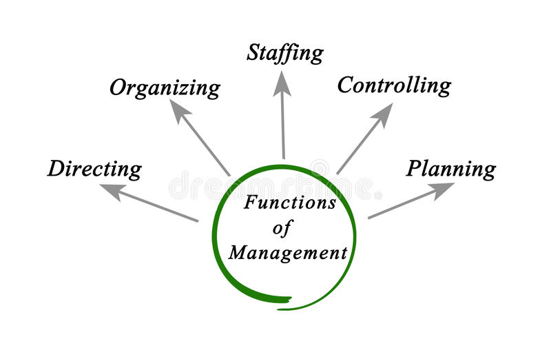 Management Functions Stock Illustrations