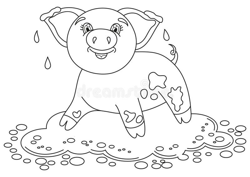 Cute Pig In A Puddle, Funny Piggy Lies And Smiling Stock