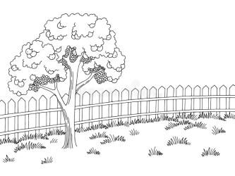 Apple Tree Black White Stock Illustrations 3 195 Apple Tree Black White Stock Illustrations Vectors & Clipart Dreamstime