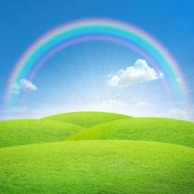 Green Field With Blue Sky And Rainbow Stock Illustration