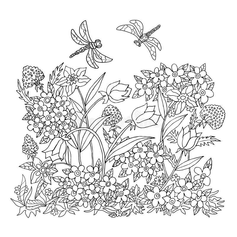 Hand Draw Coloring Illustration. Anti Stress Coloring Page