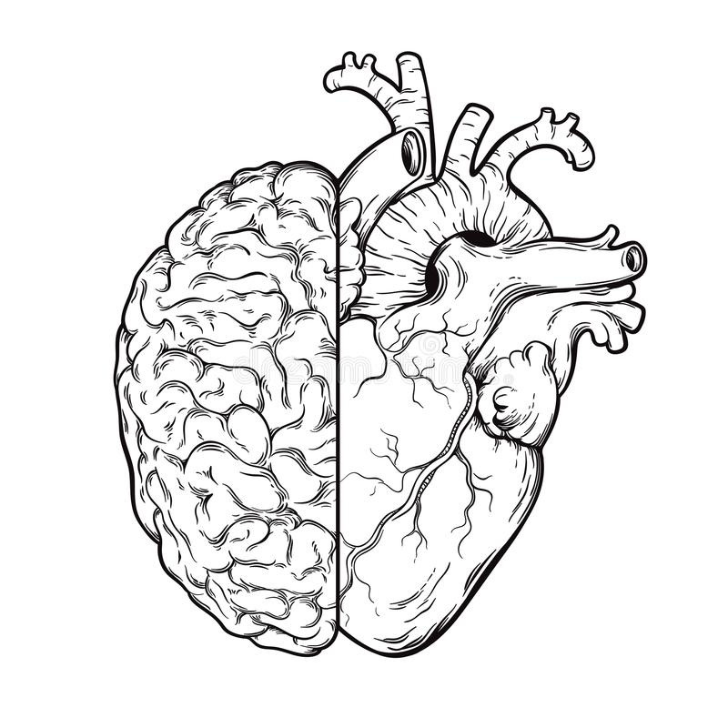 Human Emotion stock illustration. Illustration of brain