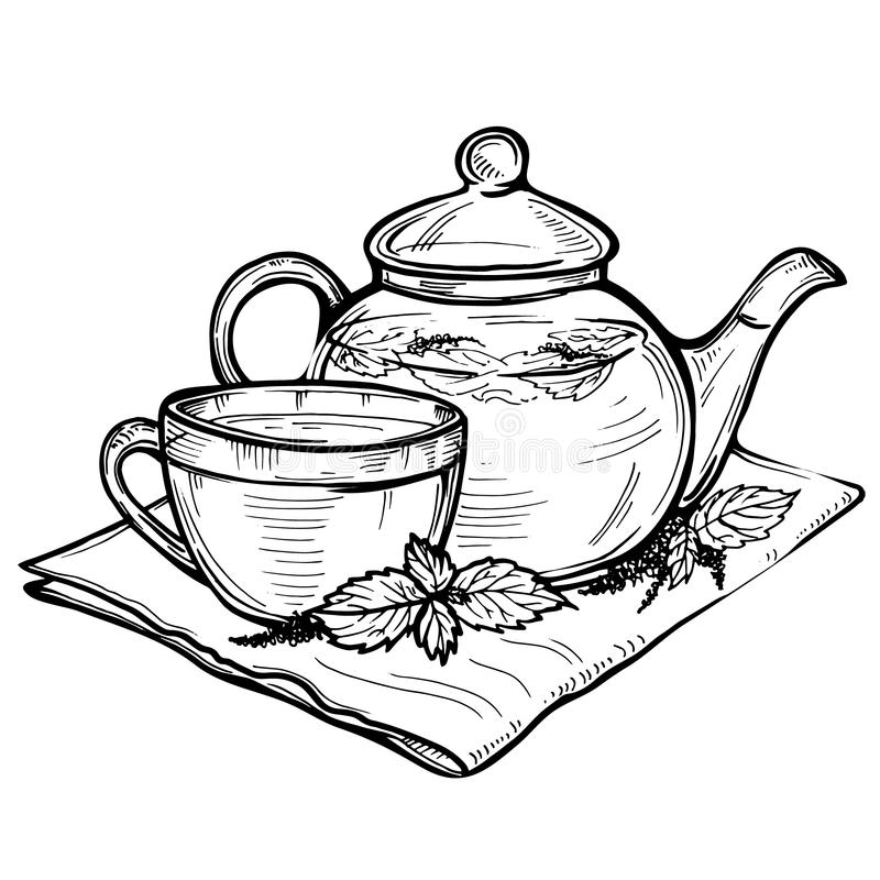 Hand Drawn Vector Sketch Of Healthy Green Tea Cup With Tea