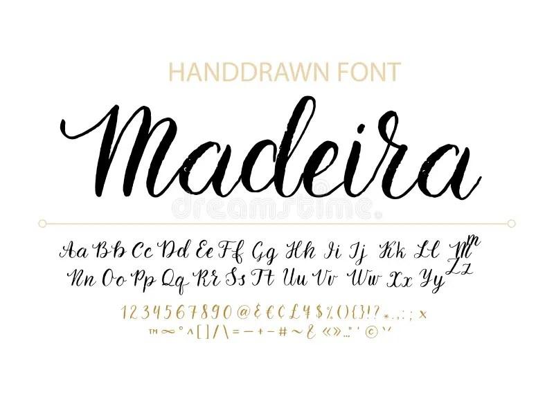 Handdrawn Vector Script Font. Brush Style Textured