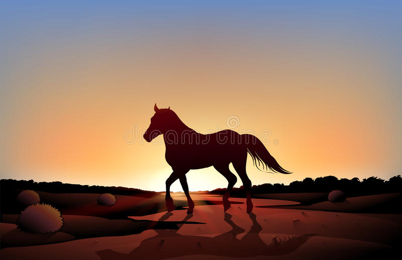 Yoga Girl Wallpapers Hd A Horse In A Sunset Scenery At The Desert Stock Vector