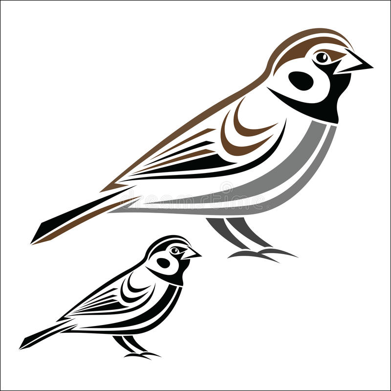 House Sparrow stock vector. Illustration of graphic, finch
