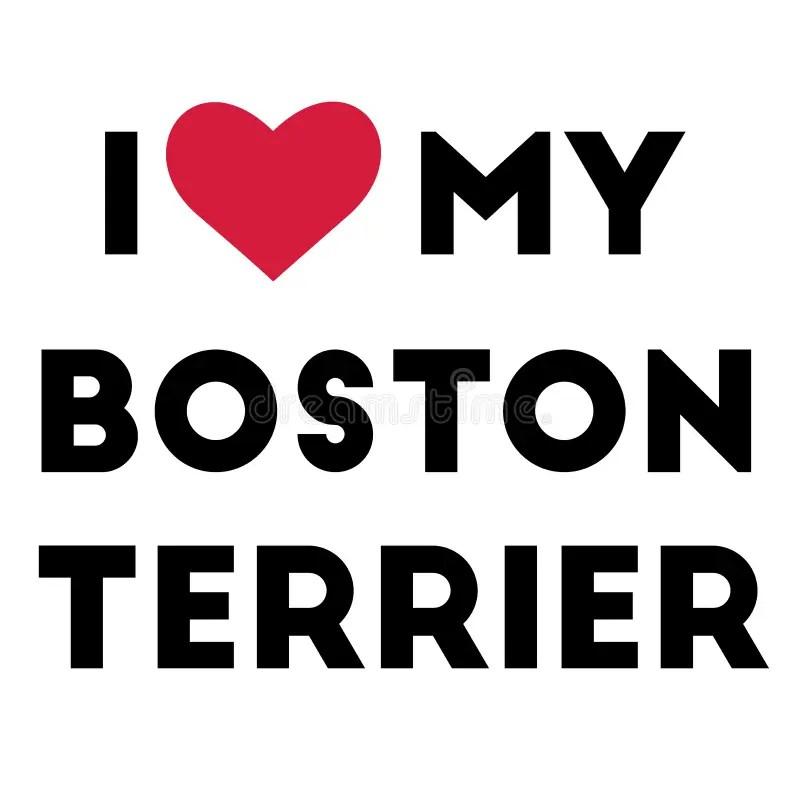 Download Boston Terrier Illustration Stock Illustrations - 654 ...