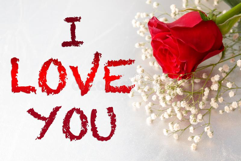 1,554 I Love You Rose Photos - Free & Royalty-Free Stock Photos from Dreamstime