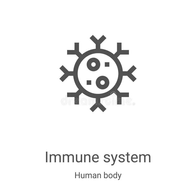 Human Immune System stock illustration. Illustration of