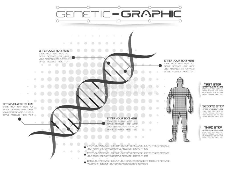 DNA Infographic. Genetic Spiral, Genomic Model Molecule