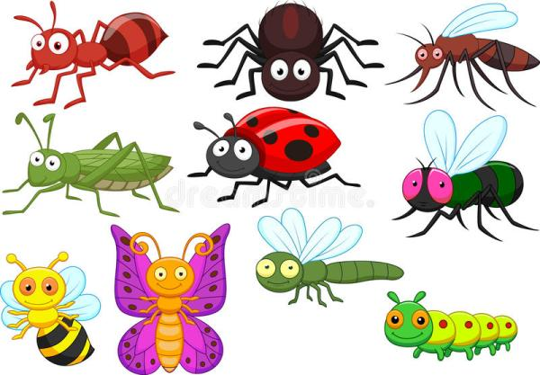 insect cartoon collection set stock