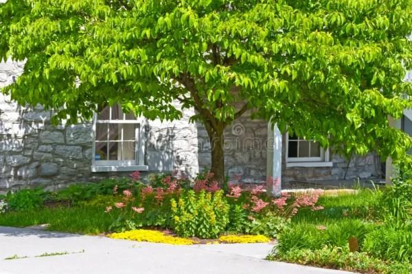 inviting home landscape stock