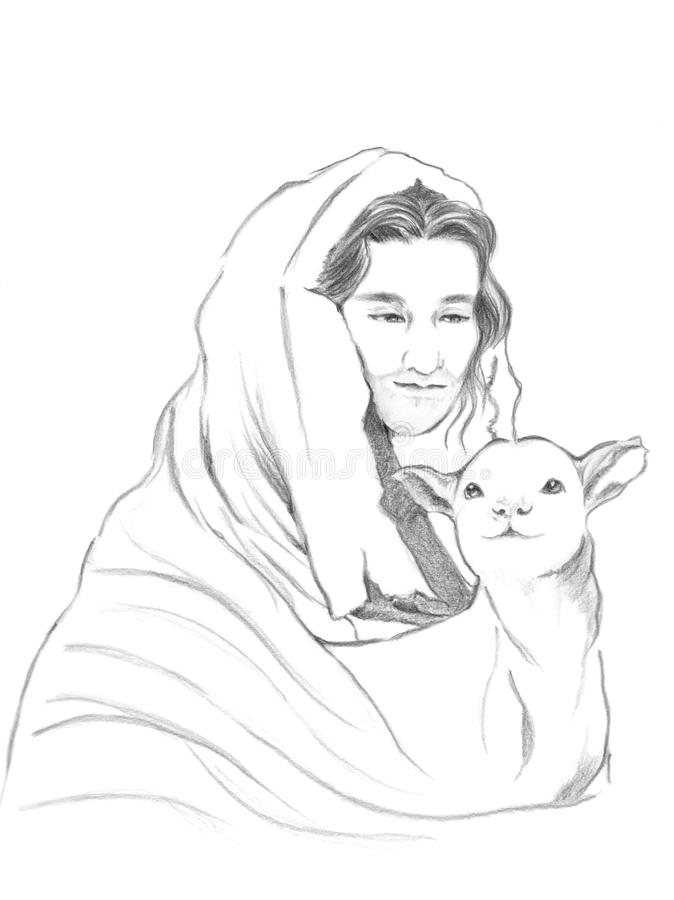 Drawn Sheep The Good Shepherd