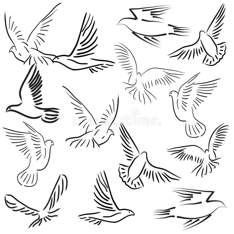 White_doves_holding_wedding_rings Ilustração do Vetor