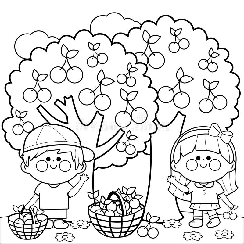 Kids Harvesting Cherries Coloring Book Page Stock Vector