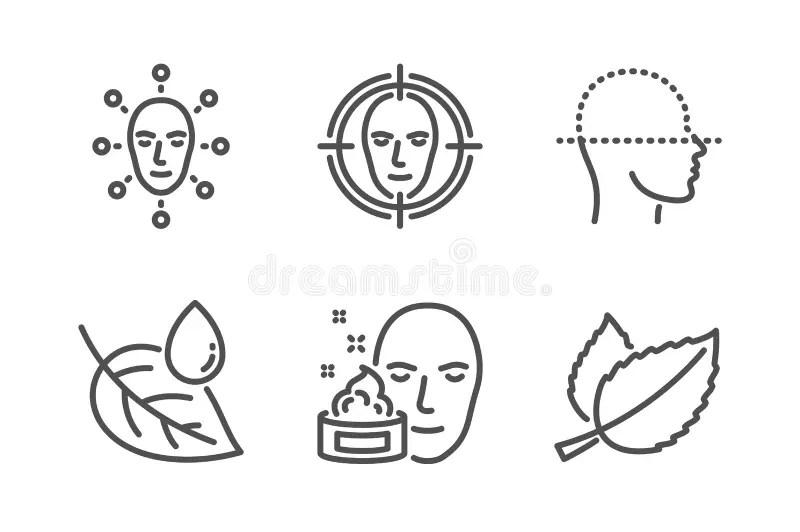 Leaf Face Stock Illustrations