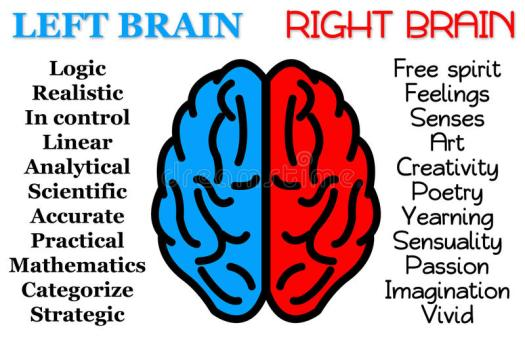 Image result for right brain left brain