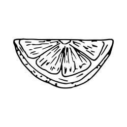 Lemon Quarter Stock Illustrations 248 Lemon Quarter Stock Illustrations Vectors & Clipart Dreamstime