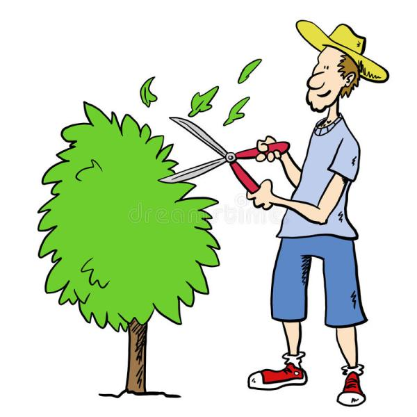 Man Trimming Bush Stock Illustration. Illustration Of