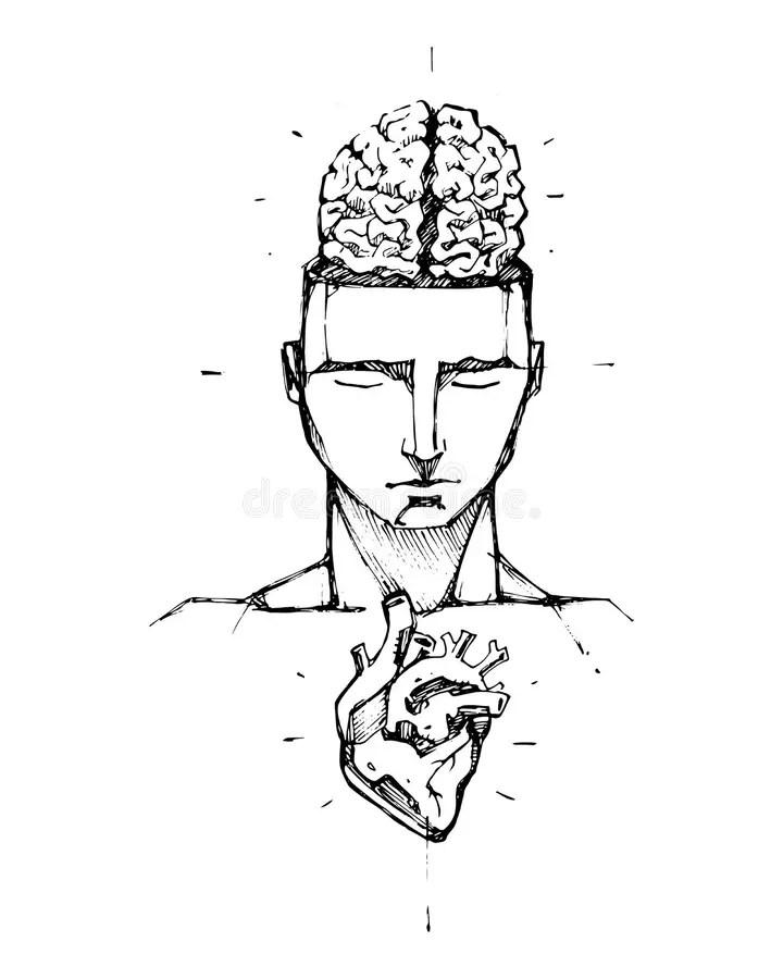 Brain Heart Stock Illustrations