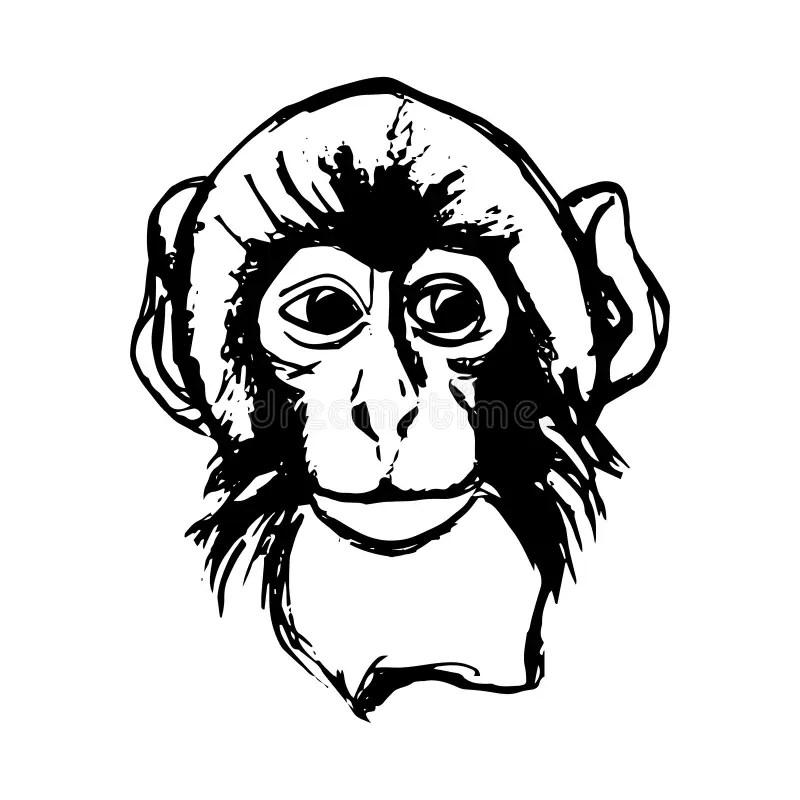Gorilla Vector Stock Vector Illustration Of Power
