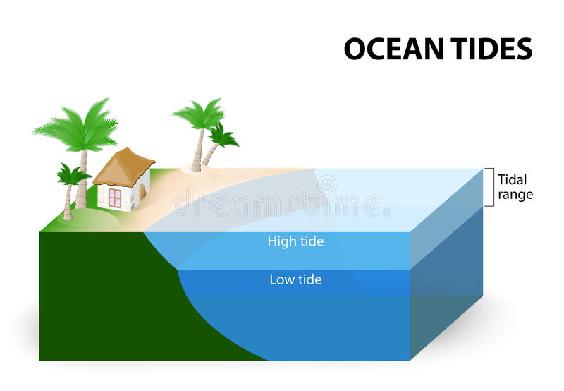 Low Tide Diagram Electrical Wiring Diagrams