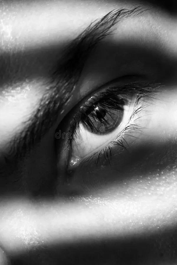 Photographie Noir Et Blanc : photographie, blanc, 53,276, Blanc, Photos, Libres, Droits, Gratuites, Dreamstime