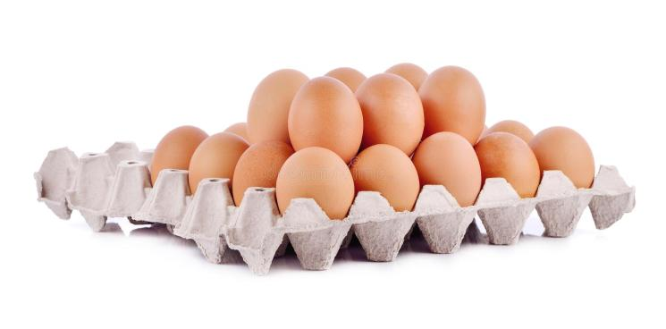 """Résultat de recherche d'images pour """"poulet oeuf"""""""