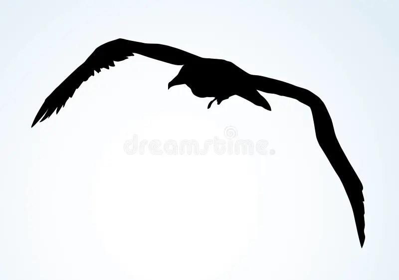 Seagull In Flight. Vector Drawing Stock Vector