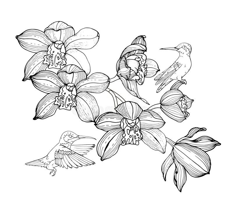 Boeket Zwart-wit vector illustratie Illustratie
