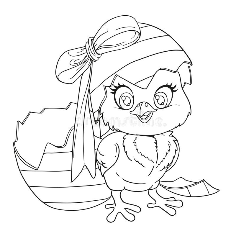Baby Chick Stock Illustrations