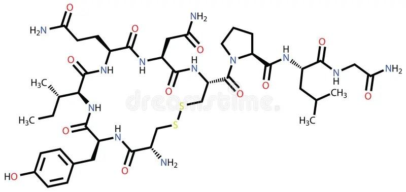 Oxytocin love hormone stock vector. Image of molecular