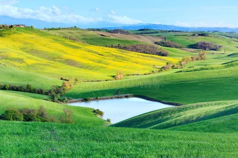 Paesaggio Rurale Della Toscana Lago Crete Senesi Italia Immagine Stock  Immagine di scenico