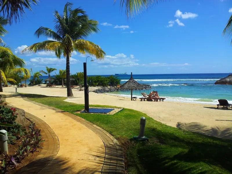 Paesaggio Tropicale Fotografia Editoriale  Immagine 27802351