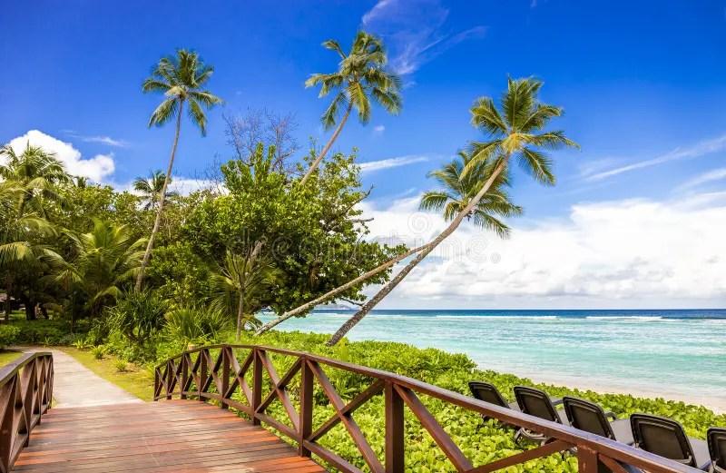 Paesaggio Tropicale In Seychelles Immagine Stock